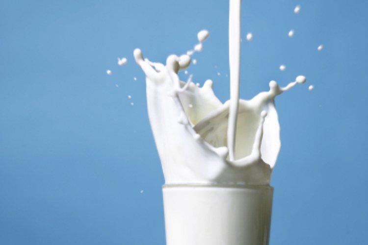 Какие анализы сдают при аллергии на коровий белок?
