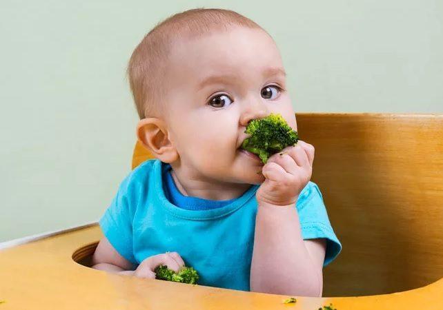 Прикорм ребенка: брокколи