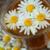 Чай из ромашки для новорождённых