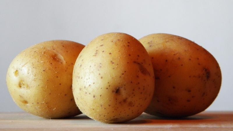 Прикорм ребенка: картофель
